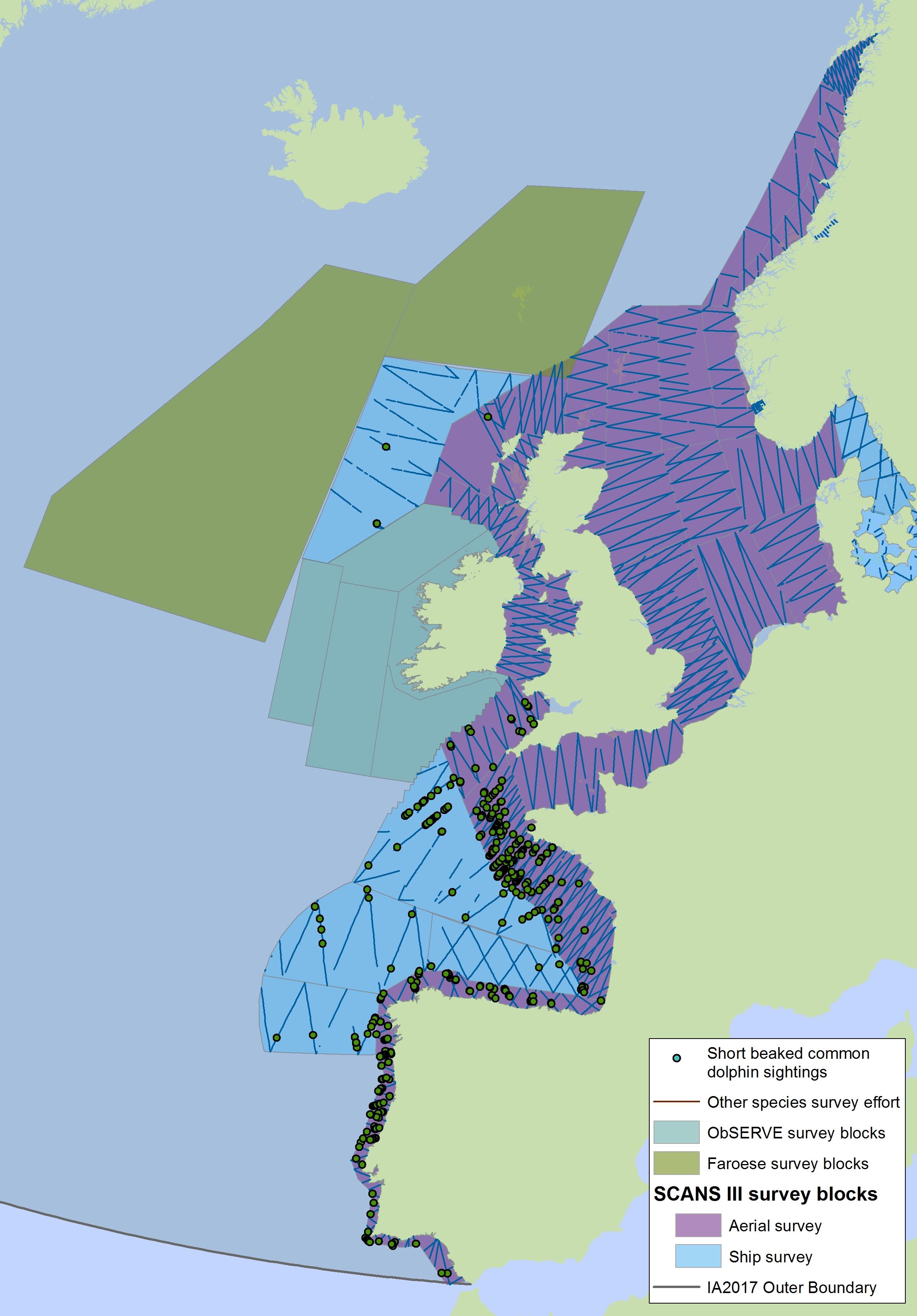 Abundance and Distribution of Cetaceans