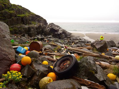 Marine litter is a problem