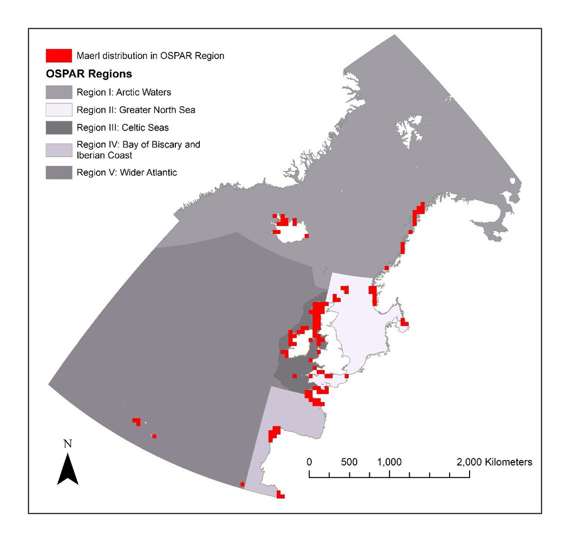 Figure 1 Distribution of 50 km squares containing maerl beds in the OSPAR maritime area, based on OSPAR T&D database (2018) and Article 17 data on Lithothamnium corallioides and Phymatolithon calcareum distribution from Spain.