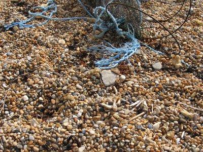 BE1 - Marine litter on beaches